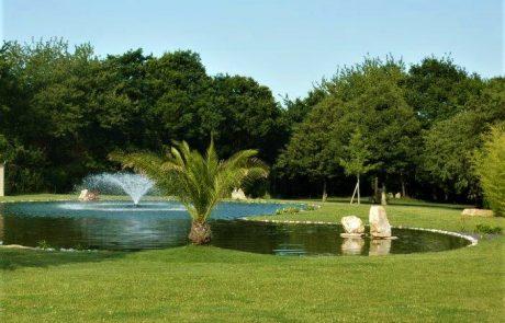 bassin jet palmier gazon arrosage brochard paysage ambrières les vallées